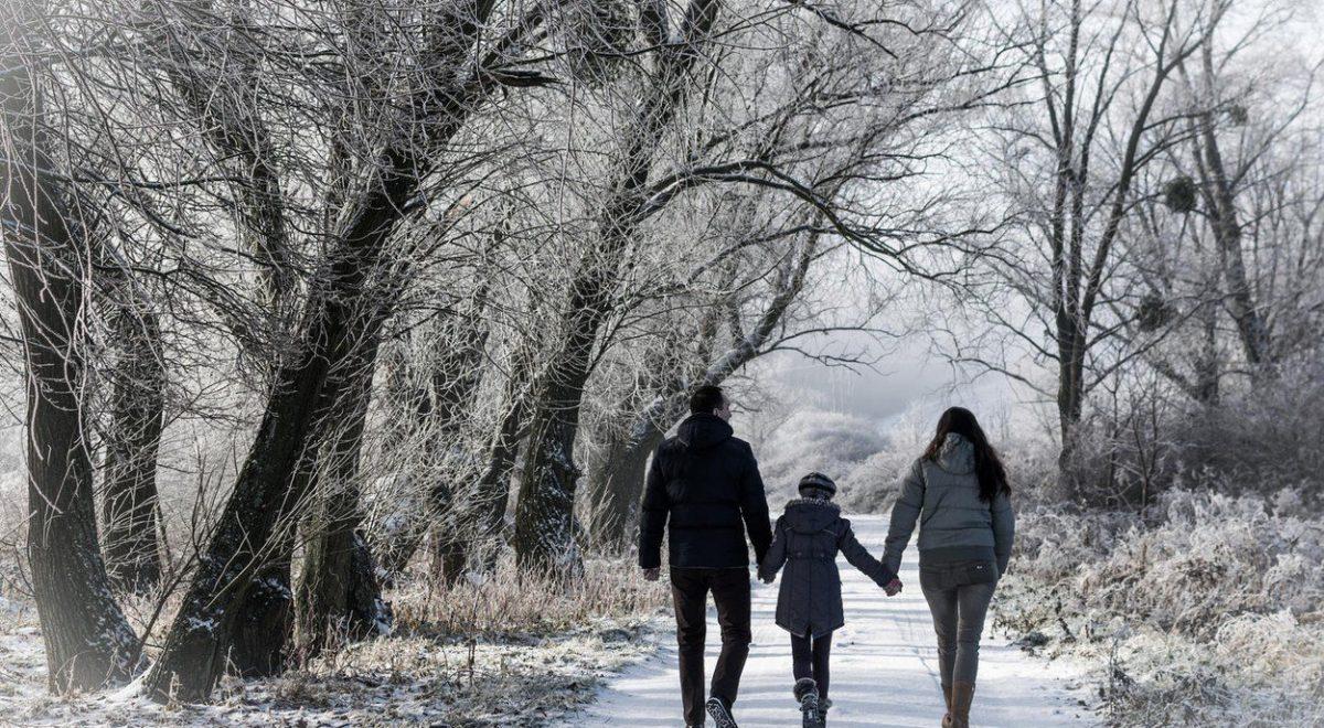 zimski sprehodi