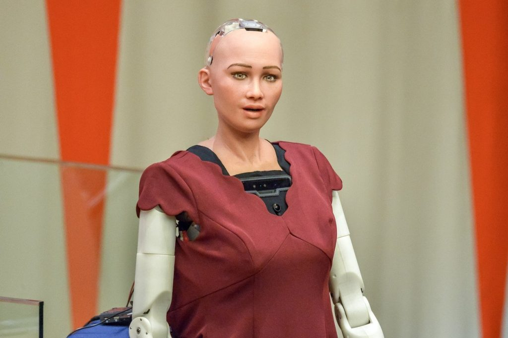 robotinja sophie 1
