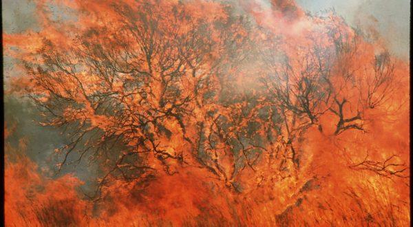 avstralija požar