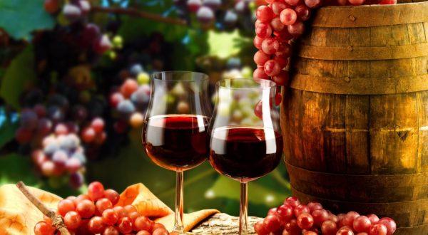 martinovanja po sloveniji