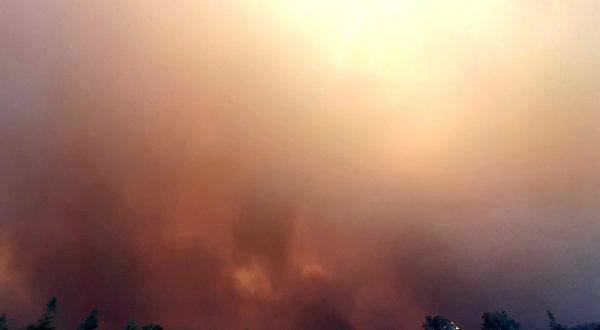 avstralija požari požigalec