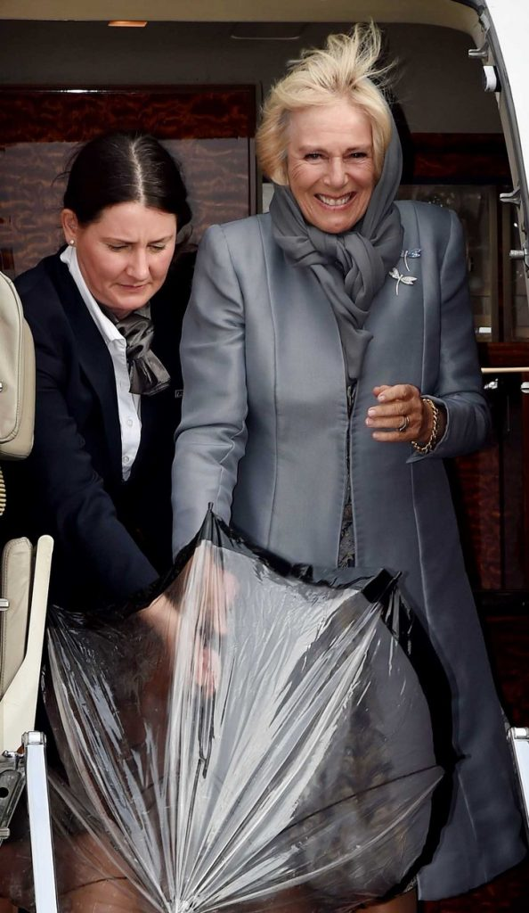 camila in princ charles plastične operacije