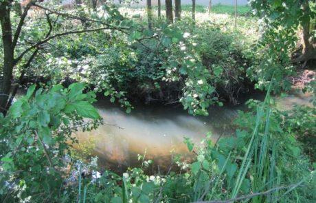 V strugi potoka pri Novi Gorici našli truplo pogrešanega italijanskega državljana