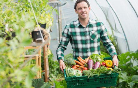 Slovenci jemo vse več zelenjave: Povprečno smo jo lani zaužili 109 kilogramov