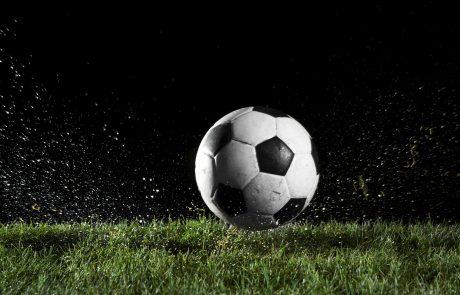 Euro 2016: Lastnik bara podporo reprezentanci izrazil na neobičajen način