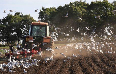 Bruselj odobril 1,4 milijona evrov vredno državno pomoč slovenskim kmetom