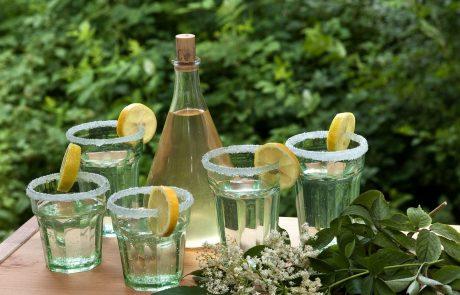 To je hit pijača letošnjega poletja: Bezgov gin enostavno morate poskusiti!