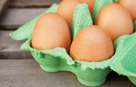 Vsa jajca so onesnažena – preverite, če z njimi pravilno ravnate!