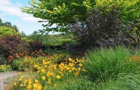 Kako vrtnariti na težkih ilovnatih ali glinenih tleh