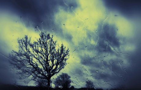 Vreme: Padavine bodo ponehale