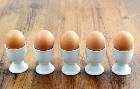 Belgijska in nizozemska policija z racijami zaradi afere z jajci