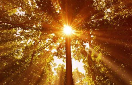 Vreme: Nad našimi kraji se bo zadrževal suh in topel zrak