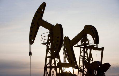 Združeni arabski emirati, eden največjih izvoznikov nafte na svetu, ciljajo na ogljično nevtralnost do leta 2050