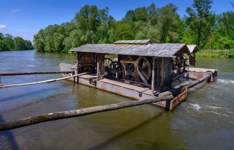 Naravovarstveniki štirih držav s peticijo ministrici za ohranitev reke Mure