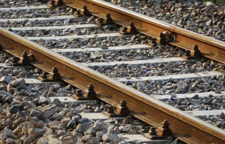 53-letnico med reševanjem psa do smrti zbil vlak