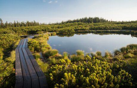 Slovenija je vodilno svetovno turistično borzo ITB Berlin obarvala zeleno