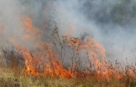 Požar nad Ajdovščino pogašen, na požarišču ostaja požarna straža