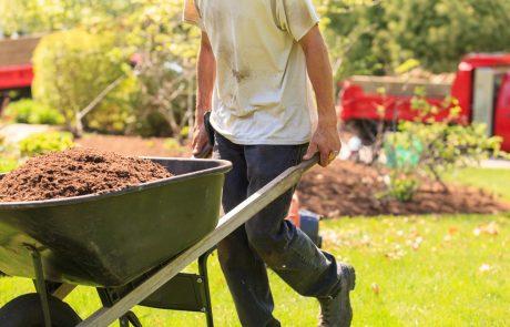 """Ministrstvo Slovence spodbuja: """"Vrtnarite! Tudi z zdravimi domačimi pridelki z naših vrtov boste prispevali k premagovanju trenutne krize"""""""