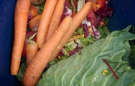 Vsak Slovenec letno zavrže 13 kg povsem užitne hrane. Kako lahko to spremenimo?