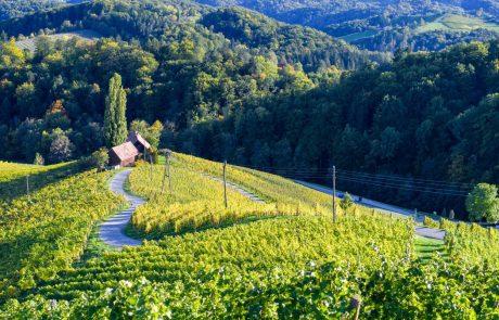 Kar 87 odstotkov Slovencev zadovoljnih s koriščenjem turističnih bonov