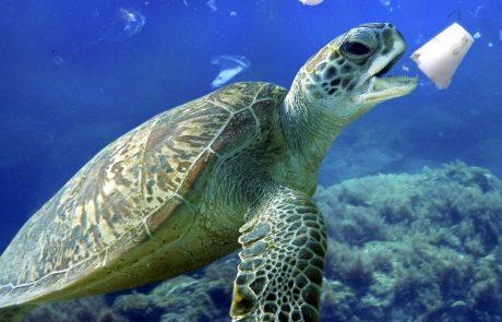 Države G20 dosegle dogovor o zmanjšanju plastičnih odpadkov v morju
