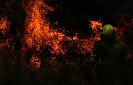 Pretresljivi prizori : V begu pred ognjem se je na obalo zateklo več tisoč ljudi