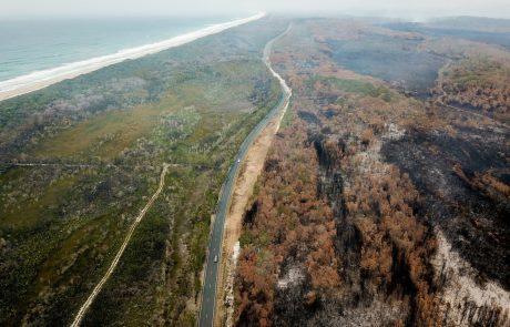 Avstralski zdravniki zaradi požarov opozarjajo na izredne razmere za javno zdravje