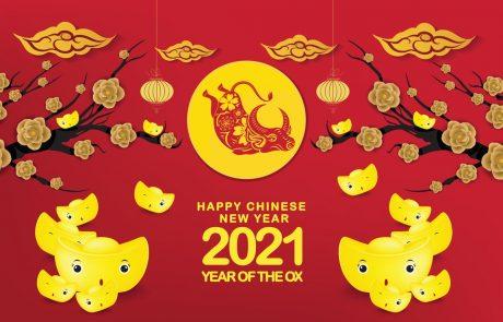 Kitajci so vstopili v leto bivola: Preberite, kaj nam kitajsko leto bivola prinaša