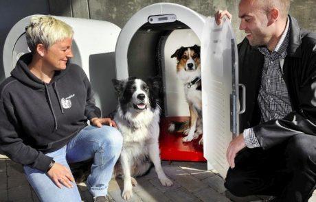 Pasja vila: Slovenci iznašli prvo pametno pasjo uto, ki je poleti klimatizirana, pozimi pa ogrevana