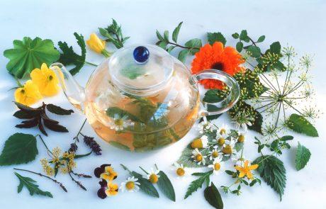 Ako nerado uzmete tablete protiv bolova, pokušajte glavobolju izlečiti pomoću ovih biljaka